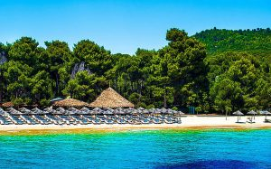 skiathos villas, villas in skiathos, owners direct skiathos